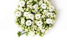 flowers & zo