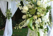 Green Themed Wedding Decor / Green's for the Queens!!! Here's something that could help you plan your Green Wedding :) <3