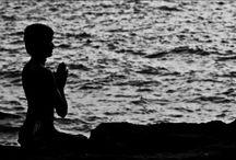 Rose Lotus Healing Blog