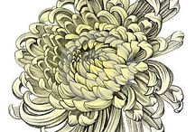 Floral draw,sketch,style