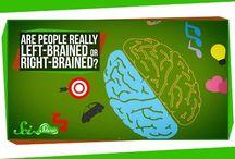 Brein Navorsing