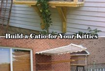 DIY Cat Kennels