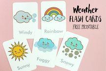 Flas cards