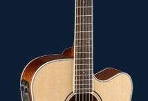 acoustic guitars / Parkwood é uma linha de violões que acabei encontrando em Atlanta quando estive por lá em 2006 Meu parceiro é o Parkwood PW 360 - infelizmente não é achado no Brasil e eu preciso de uma marca que me patrocine que tenha estas características: um violão que tenha resposta com R maiúsculo! Som encorpado, maravilhoso... alguém aí pra me patrocinar?