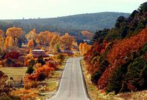 Fall into Taos / Taos, NM is one of the most beautiful destinations for fall foliage. The fall season is a great time to plan a one-of-a-kind trip to Taos.