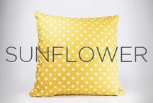 Pillow ☺️