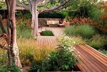 Modern Landscaping / by Greg Thorne