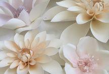 fiori ary ♥♥  #1