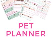 Pet Related Travel