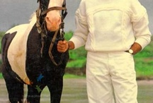 Amitabh Bachchan (Big B)