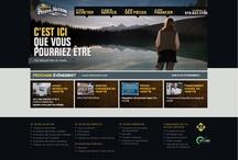 Caravane de la Petite Nation - design web