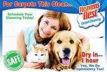 Birmingham Carpet Cleaning / We clean carpets throughout Birmingham, Alabama!