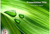 Plants PowerPoint Presentation