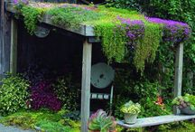 2018 garden and shed ideas