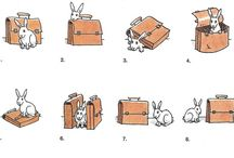 prepositions in pictures
