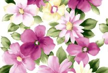 wallpapper FLOWER