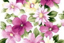 wallpapper FLOWER