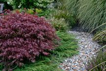 Dry Beds & How to....