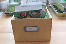 Aussaatideen / Hier findest Du ein paar Anregungen, wie Du sinnvoll recyclen kannst oder was Dir bei der Aussaat hilft.