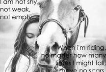 Equus ❤️