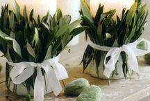 свадьба зелень дерево