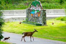 British Columbia campgrounds
