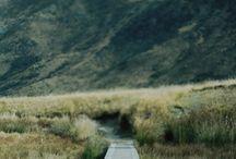 NZ, my place.