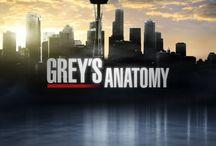 GREY'S ANATOMY (2005 - )
