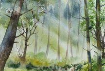 Watercolour / by Arlene H