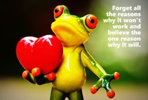 #FrogWisdom