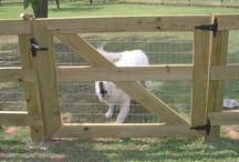 Garden - Dogscaping
