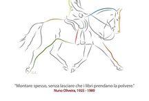 Equestrartshirt