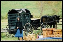 Amish Inspiration / A collection of Amish-themed pins.  / by Kathy Fuller