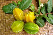 Frutas da Terra