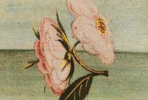 Botticelli flores