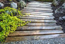 chemin de bois