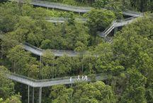 arhitectura peisagistica