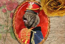 I ♥ Barbet - French Water Dog