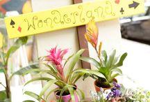 Belanidia Flower Shop
