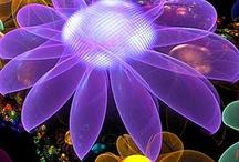 Spirit virág