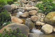 water ways in yard