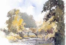 David Bellamy Watercolour