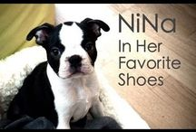 NiNa In Her Favorite Shoes