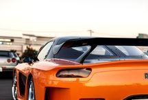 Mazda. pup