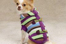 Dog Topi clothes