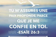 Bible Citation
