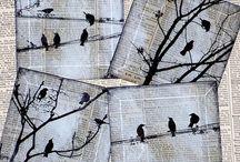 wrony na gazecie