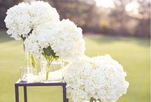 Weddings on Memorial Day