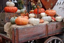 Fall decor / by Laurie Ress