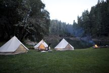 Around the Campfire / Camping
